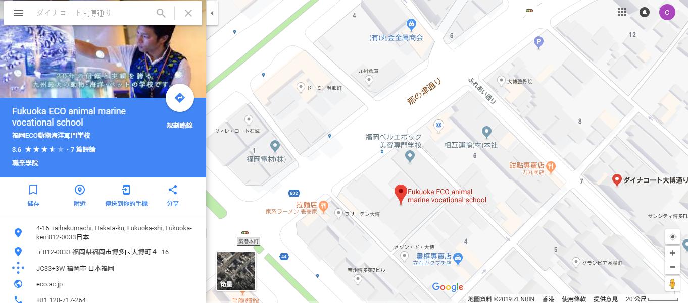 ダイナコート大博通り 12